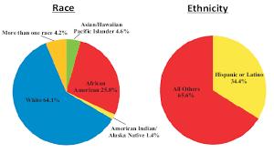 health center patients by race ethnicity 2010 pie chart