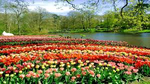 Small Picture top 10 most beautiful gardens in the world YouTube