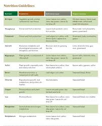 Vegetable Garden Fertilizer Chart Smart Inspiration Vegetable Garden Fertilizer Innovative