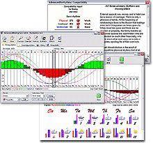 11 Best Biorhythms Images Compatibility Chart Reiki