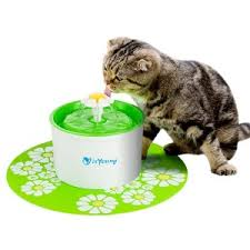 do you want to offer proper cat care even when youu0027re not around the isyoung pet fountain helps busy pet owners by providing an alternative the classic automatic water bowl for cats55