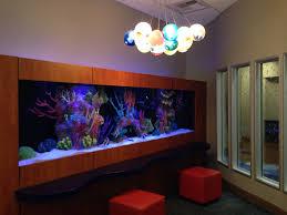Office aquariums Mini The Fish Tank At My Sons Doctors Office Doctor Office Aquariums Fish Tank Aquarium Services The Fish Tank At My Sons Doctors Office Aquariums Fish Tank