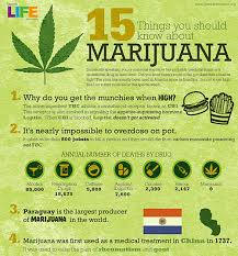 the more you know all about buds