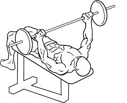 Decline Bench Press How To Work Your Lower Chest  Pop WorkoutsDecline Barbell Bench