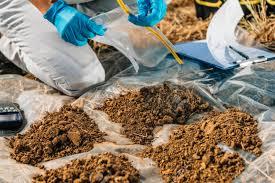 Testing Soil Agronomist Opening Soil Sample Bag In The Field