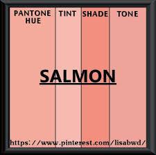 Salmofan Color Chart Pantone Seasonal Color Swatch Salmon Pantone Colour
