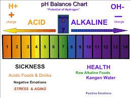 Ph Balance Chart Drink Hydrogen Rich Water For Better Health Alkaline Water