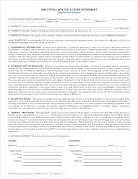 Sample Template Sample Template Free Non Disclosure Agreement Nda ...