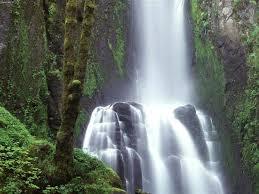 Image result for چشمه و آبشار نیاسر