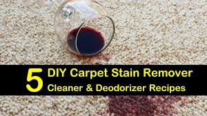 diy carpet stain remover titlimg