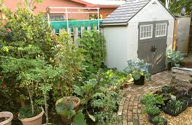 Small Picture Backyard Edible Garden Design Urban Farming Institute
