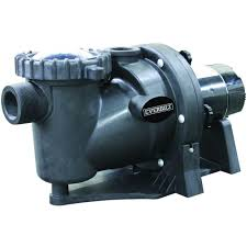 everbilt 1 5 hp 230 115 volt in ground pool pump with protector technology
