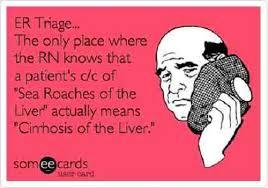 Funny Nurse Quotes Magnificent 48 Funniest Nursing Quotes And ECards Part 48 NurseBuff
