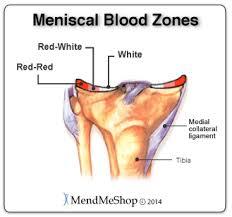 turmeric for torn meniscus