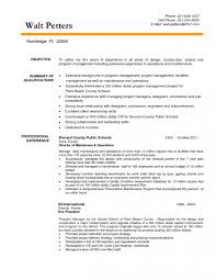 resume objectives for managers resume objective for project manager oyle kalakaari co