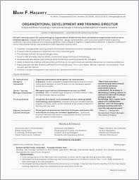 Example Of A Summary For A Resume Awesome 48 Business Summary Professional Best Professional Resume Example