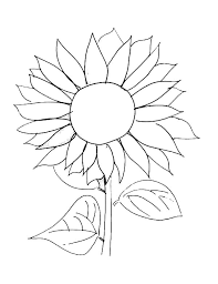 Small Picture Sunflower Picture Coloring Page Download Print Online Coloring