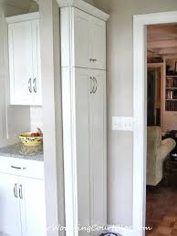 thin cabinet skinny wall cabinet skinny wall cabinet slim kitchen cabinet marvellous design wall tall thin thin cabinet