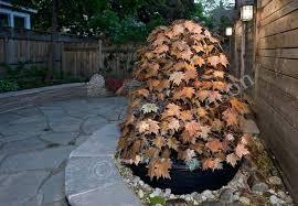 copper water fountain garden fountain astounding outdoor copper water fountains