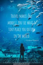 25 Travel Quotes To Inspire You To Study Abroad Grassroute Adventures