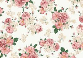 pink and white vintage background.  Background Vintage Pink And White Roses Vector Background To V