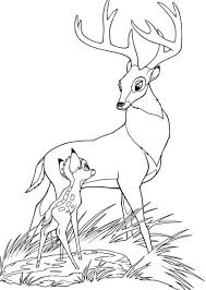 Small Picture Fancy Bambi Coloring Pages 75 For Your Coloring for Kids with