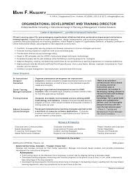 Ceo Resume Samples Extraordinary Ceo Resume Examples From The Ficial Website Of The University Of