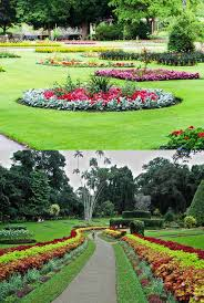 nuwara eliya vegetable garden