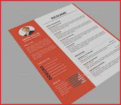 Professional Resume Layout Best Of 41 E Page Resume Templates Free ...