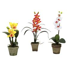 nearly natural potted orchid mix in yellow red white set of 3