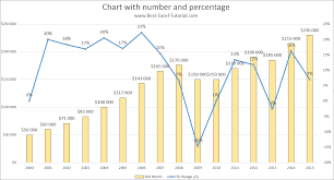 Best Excel Tutorial Chart With Number And Percentage
