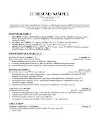 Server Resume Skills Information Technology It Resume Sample Image