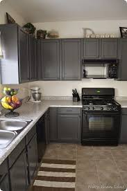 painted gray kitchen cabinetsLove the gray cupboards Benjamin Moore aura paint color match from