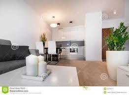 Modern Luxury Living Room Modern Luxury Living Room Interior Design Stock Photo Image