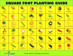 garden planning tool. Best Ideas About Square Foot Gardening Planner On Pinterest Design Planning Tool Homes Zone Garden G