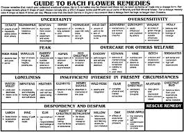Bach Flower Remedies Chart Bach Flower Essences For Breaking Addiction A Hangover