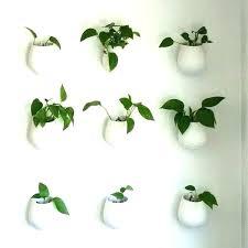 wall flower pots mount plant holder mounted holders terrarium design pot india