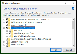 IIS Web Server: (Internet Information Services)