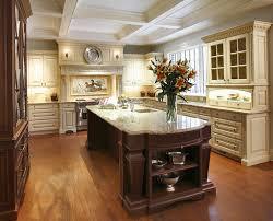 Luxury Kitchen Cabinets Brands Home Design Ideas Painting Kitchen