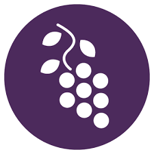 """GRAPE Grand Rapids on Twitter: """"Welcome Ashley Petkus as GRAPE Blog Editor  - http://t.co/Pr8aNQGxFn http://t.co/OjHs2wuqCN"""""""