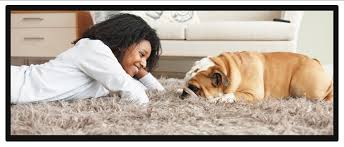 area rug cleaners in gatineau quebec