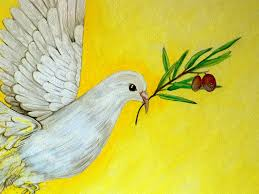 dove painting peaceful dove by ann marie napoli