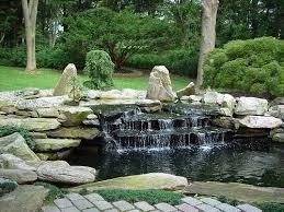 Building a Koi Pond Veggie Waterfall Filter