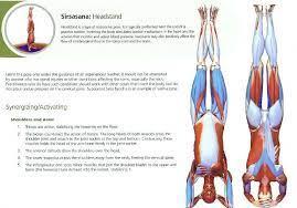 Sirsasana is a very safe pose if you learn how to evolve on it. Sirsasana Yoga Anatomy Yoga Stretches Yoga