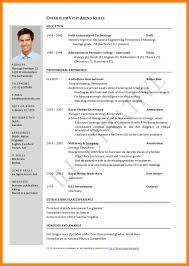 11 Curriculum Vitae Example Doc Theorynpractice