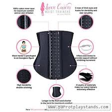 Luxx Curves Waist Trainer By Luxx Health Corset For Weight