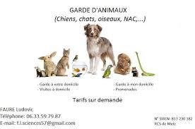 L'esprit tranquille, service de gardiennage de chats à domicile à montréal, vous propose de visiter votre chat chez lui, selon vos directives et vos attentes. Garde D Animaux En Lorraine Home Facebook