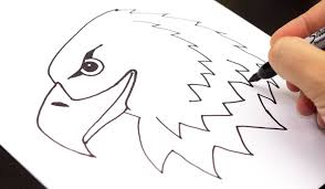 Small Picture How To Draw A Realistic Bald Eagle Head Art For Kids Hub