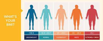 Bmi Categories Understanding Bmi Categories Levels Of Body Mass And
