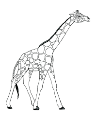 Cartoon Giraffe Coloring Pages Coloring Pages Giraffe Coloring Pages